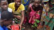 Benin moringa