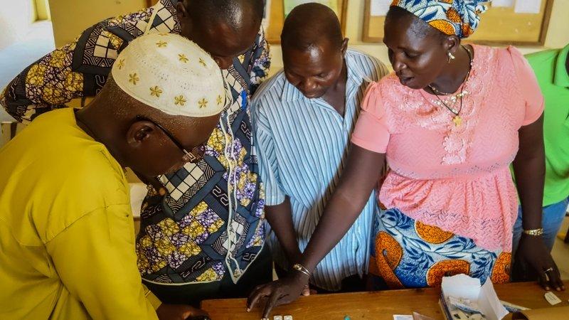 Malaria Tests, Northern Benin