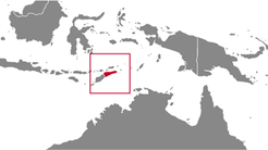 Timor-Leste country map