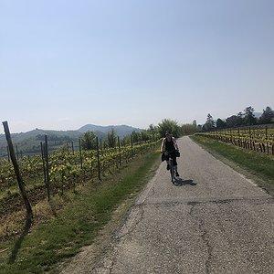 In bicicletta vicino a Torrazza Coste