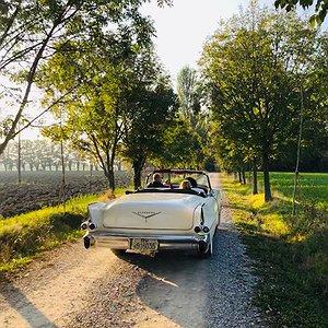 Auto in Viale