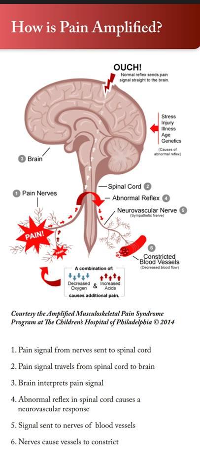 Pain Loop