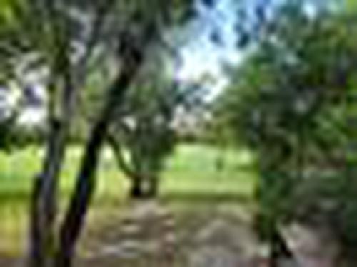 Photograph of 10642 Stonebridge Blvd, Boca Raton, FL 33498