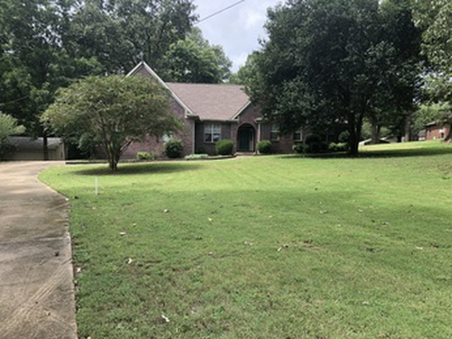 Photograph of 9165 Willow Branch Dr, Olive Branch, MS 38654