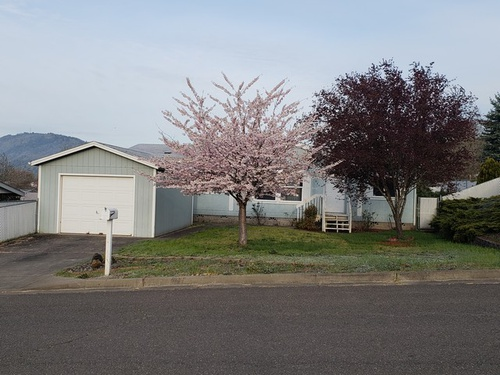 Photograph of 250 Dark Horse St, Roseburg, OR 97470
