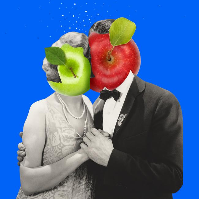 Recettes originales avec des pommes fraîchement cueillies