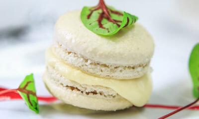 Macarons au Sir Laurier d'Arthabaska et au sureau