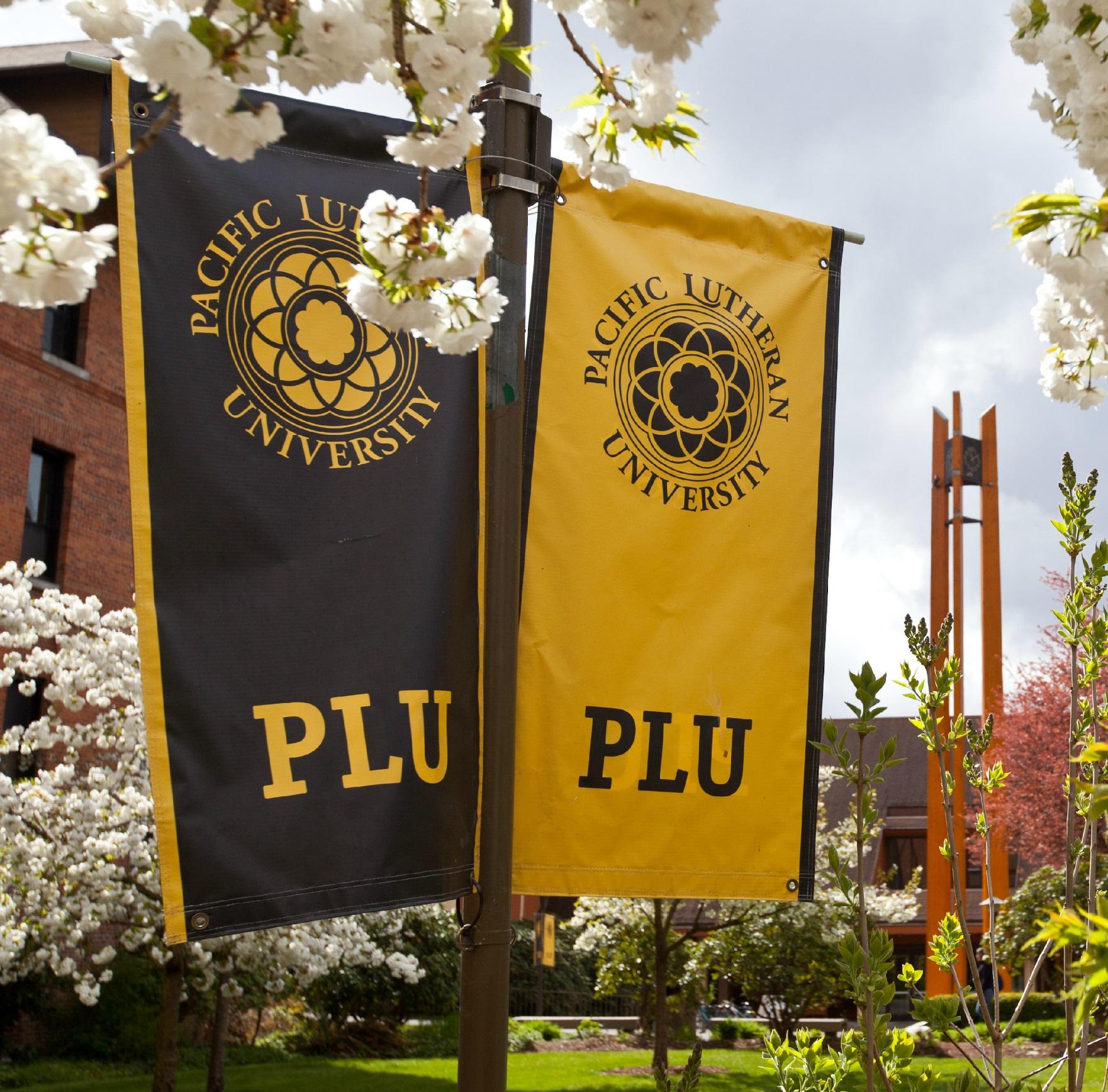 PLU Banner