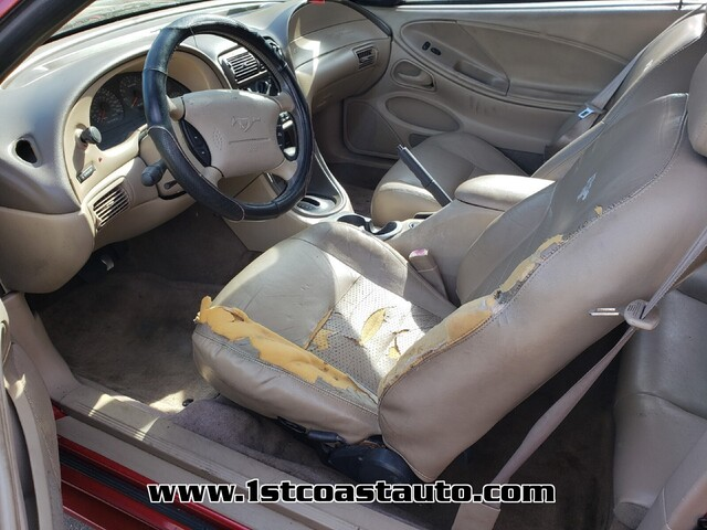 used 1999 Ford Mustang car