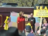Palin's (Tea) Party