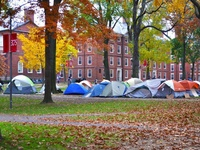 Occupy Harvard: The First Morning