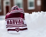 Harvard hit by Snowstorm