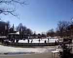 Skate at Frog Pond