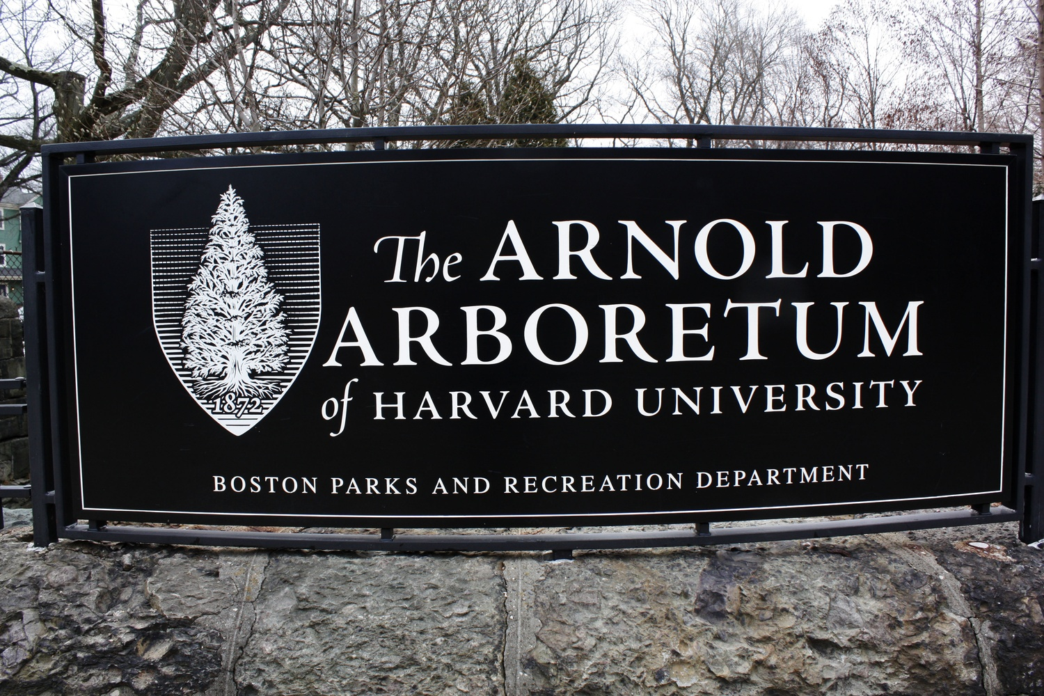 Welcome to the Arboretum