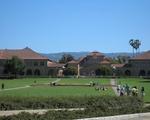 Stanford vs. Harvard