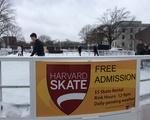 Yay, ice skating!