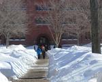 Tall Snow Piles