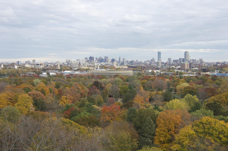 Mount Auburn Cemetery View