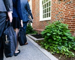 Meet Harvard's Lawyers