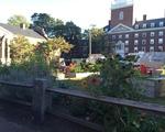 The Community Garden