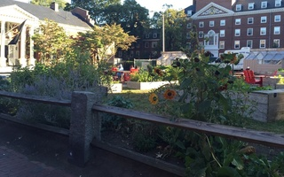 Lowell House Community Garden