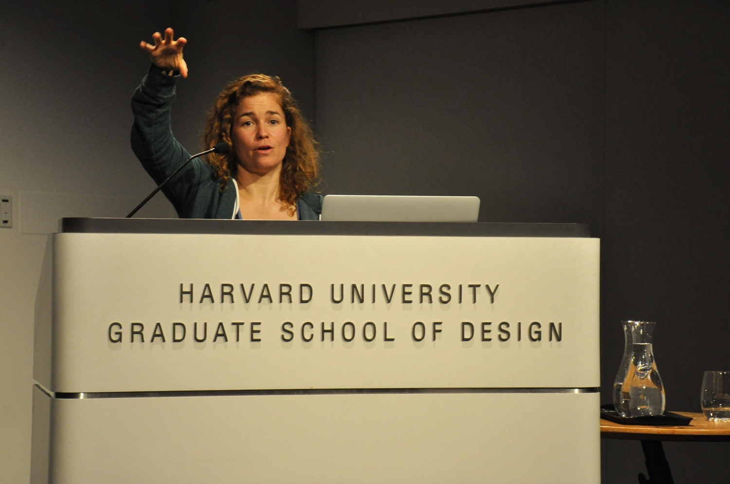 Loeb Fellowship Lecture by Caledonia Curry