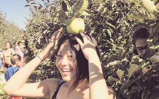 apple picking picture