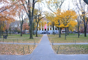 Widener Autumn