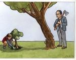 If a Tree Falls...