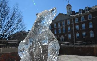 Pforzheimer House Ice Statue