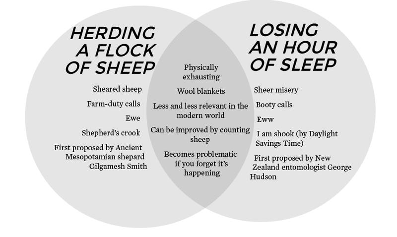 sleep/sheep