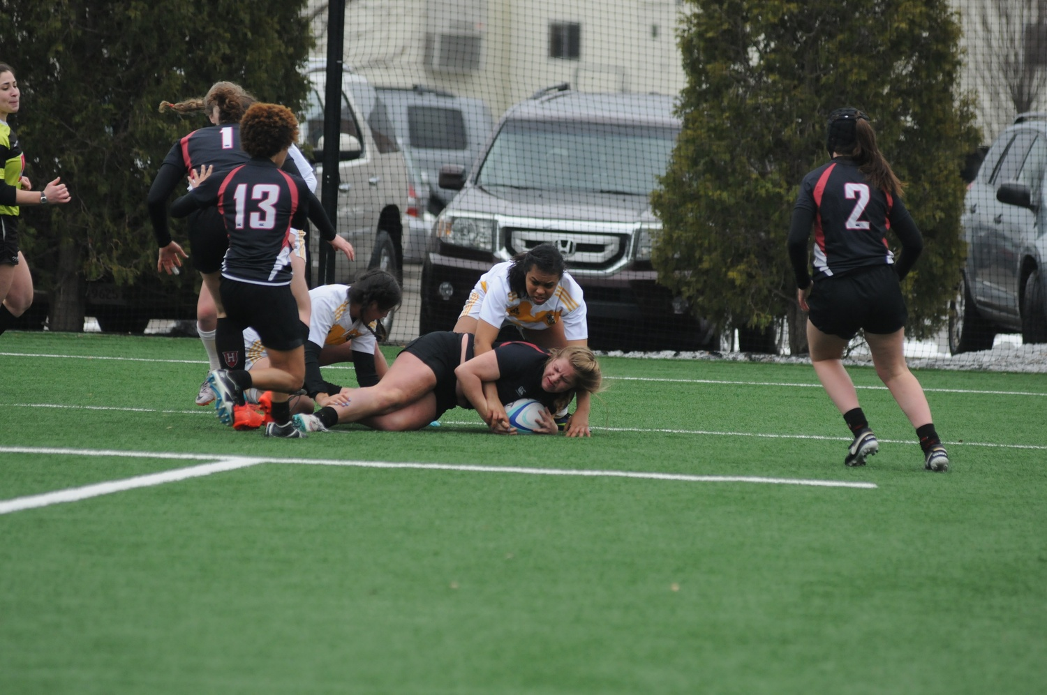 The Rugby Ball(Quanco)