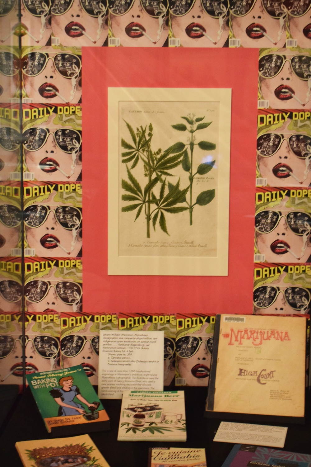 Houghton Library's 'Altered States' Exhibition