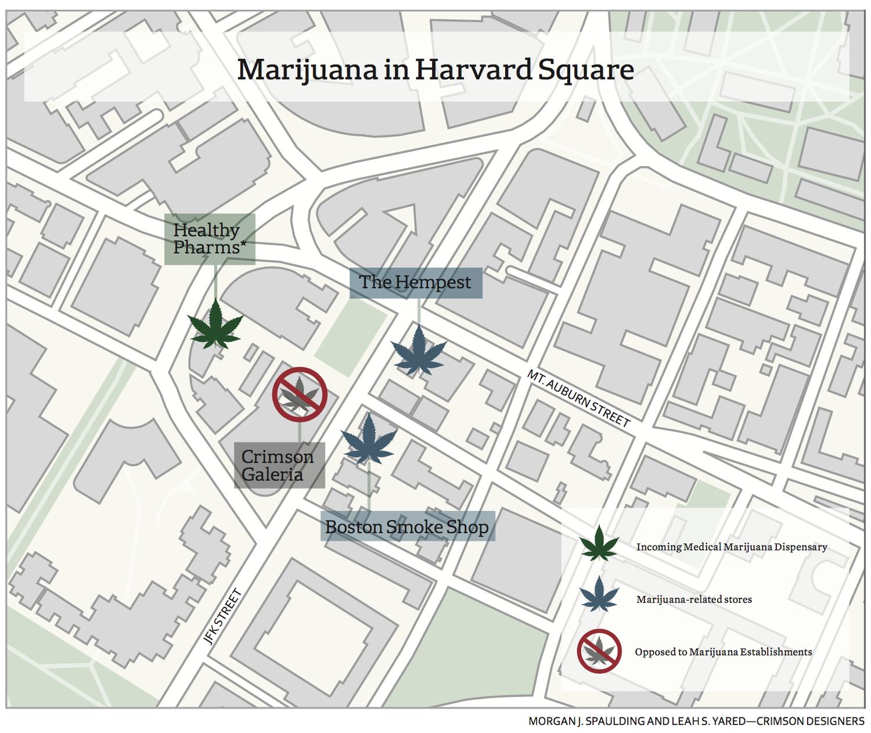 Marijuana in Harvard Square