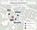 Marijuana in Harvard Square