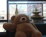 Quincy Teddy Bear