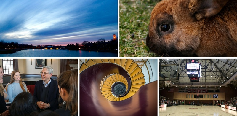 This Week in Photos Apr 9