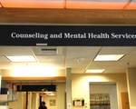 Counseling and Mental Health Services