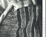 lavender portfolio cover