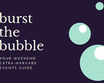 Burst the Bubble Banner