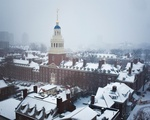Lowell in the Snow