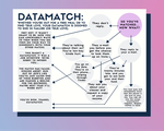 Datamatch flowchart