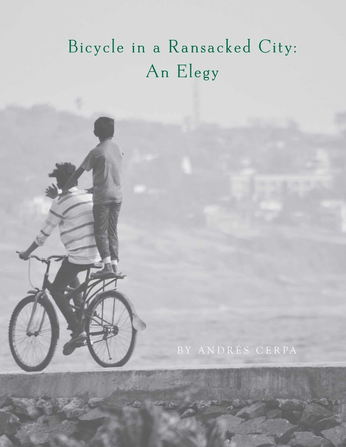 Bicycle in a Ransacked City: An Elegy Cover