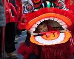 Lunar New Year 6