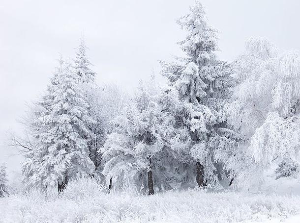 Winter Arts Playlist Photo