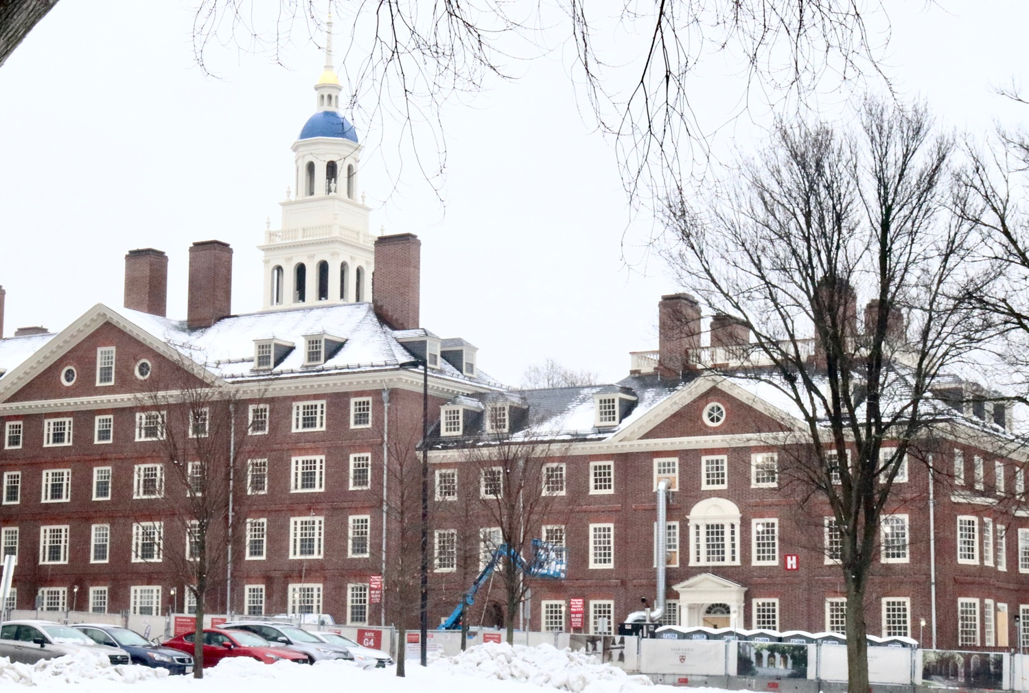 New Lowell in the Snow 2019