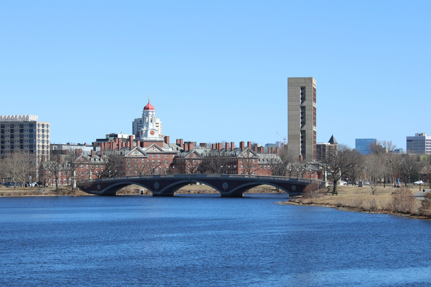 River Houses on the Charles