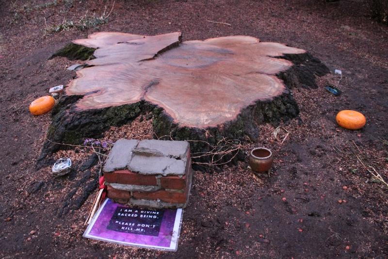 Div School Tree