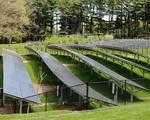 Arboretum Solar Panels