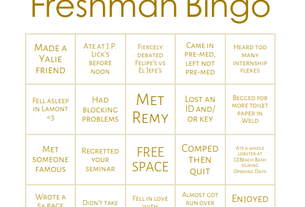 freshman bingo 2019